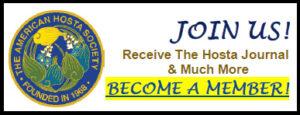 American Hosta Society