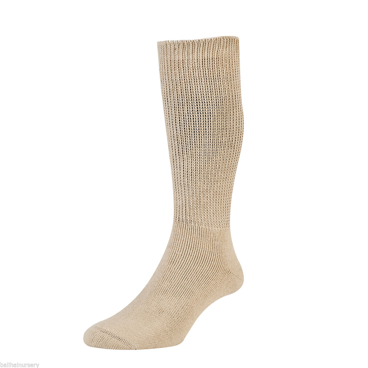 HJ Hall Diabetic Cotton Socks size 4-7 Oatmeal HJ1351